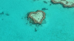 心脏礁石 免版税库存图片