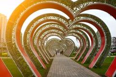 心脏胡同在花公园 格罗兹尼,车臣,俄罗斯 库存图片