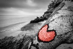 心脏雕刻了入在狂放的海滩的下落的树干并且绘了红色 爱 免版税库存图片