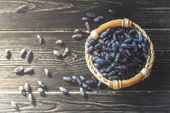 忍冬属植物新鲜的莓果在一个明亮的篮子收集了 免版税图库摄影
