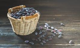忍冬属植物新鲜的莓果在一个明亮的篮子收集了 免版税库存图片