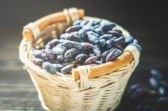 忍冬属植物新鲜的莓果在一个明亮的篮子收集了 库存照片