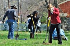 志愿树木种植岸边的恢复项目 图库摄影