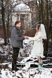 忠勇新郎和新娘在冬天森林 免版税库存图片