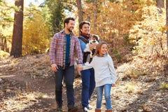 快乐男性加上走通过秋天森林地的孩子 库存图片