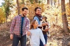 快乐男性加上走通过秋天森林地的孩子 免版税库存图片