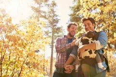 快乐男性加上走通过秋天森林地的婴孩 库存图片