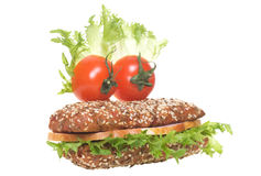 快乐的三明治 免版税库存图片