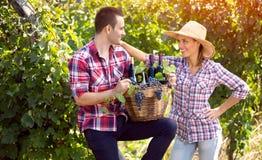 快乐的农夫夫妇在葡萄园里 库存照片