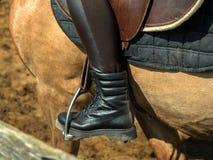 年轻快乐的女孩在一匹棕色马乘坐 骑马训练 马术 马镫特写镜头 免版税库存图片