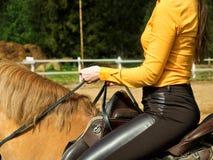 年轻快乐的女孩在一匹棕色马乘坐 骑马训练 马术 马鞍特写镜头 图库摄影