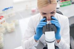 快乐的女性科学家在实验室做测试 免版税图库摄影