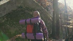快乐的深色的旅游男服衬衣ina笼子,并且挑运有步行通过森林,秋天旅游业概念 股票视频