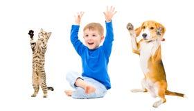 快乐的男孩、狗和猫 免版税库存照片