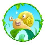 快乐的蜗牛 免版税图库摄影