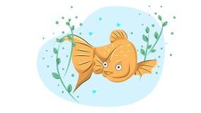 快乐的金鱼游泳在海藻中的水中 免版税库存照片