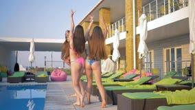 快乐的长发女性公司到泳装里有休息靠近水池在夏天休假期间在手段 影视素材