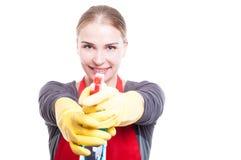 快乐的主妇清洁和洗涤物 库存图片