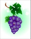 快活的葡萄 库存照片