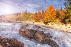 快的山小河 水是被洗涤的山石头 河在秋天森林里 免版税库存图片