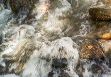 快速流动的山小河 免版税库存图片
