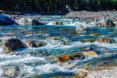 快速流动的水,手肘落省度假区,亚伯大,加拿大 图库摄影