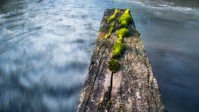 快速流动的河在一轻快天 免版税图库摄影