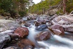 快速流动的Asco河在可西嘉岛 免版税库存照片