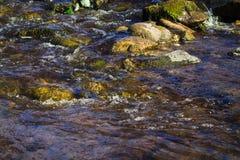 快速的北部岩石河Selmenga 免版税库存图片