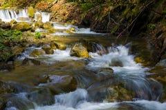 快速的山河,春天在喀尔巴汗,乌克兰 库存图片