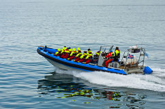 从快速的黄道带小船的鲸鱼观看的游览在Husavik附近 免版税库存图片