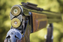 快门狩猎步枪 图库摄影