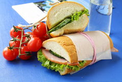 快餐三明治(panini)与菜 免版税库存图片