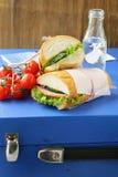 快餐三明治(panini)与菜 库存照片