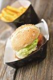 快餐炸薯条汉堡包 免版税库存图片