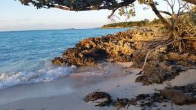 快活的霍尔海滩 免版税库存照片