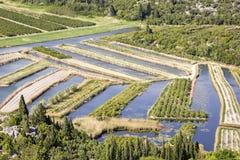 忽略Neretva河三角洲在克罗地亚 免版税库存图片