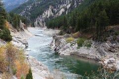 怀俄明山的熊河 库存图片