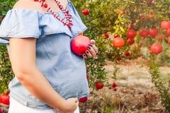 怀孕和营养-孕妇用石榴果子在手中在日落庭院背景 生育力概念 有选择性 免版税图库摄影