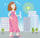 怀孕夏天 向量例证