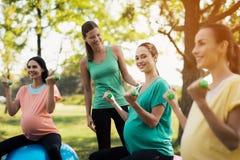 怀孕瑜伽 三名孕妇参与健身在公园 他们坐瑜伽的球 免版税库存图片