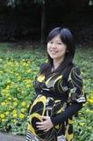 怀孕的亚裔妇女 库存图片