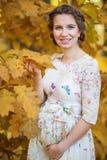 怀孕的女性在秋天 库存图片
