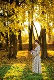 怀孕的女性在秋天 库存照片
