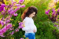 怀孕的愉快的女孩在开花桃红色庭院里 免版税库存图片