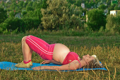 怀孕的执行 库存照片