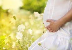 怀孕的腹部 库存照片