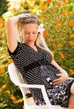 怀孕美丽的女孩 库存照片