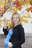 怀孕美丽的白肤金发的女性 库存图片