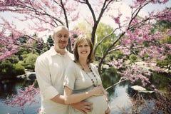 怀孕 免版税库存图片